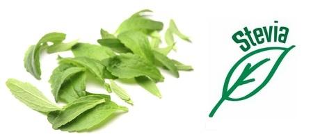 Stevia – kas tõesti tervislik suhkru asendaja?